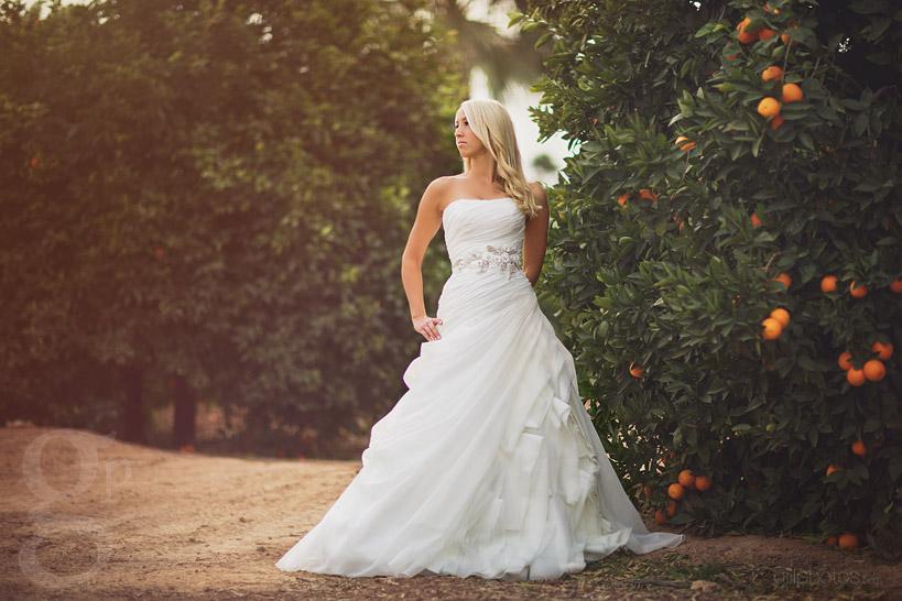 IMAGE: http://www.gillphotos.com/wp-content/uploads/2014/01/Mesa-Wedding-Photographer-in-Arizona-1.jpg